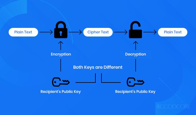 rsa encryption model
